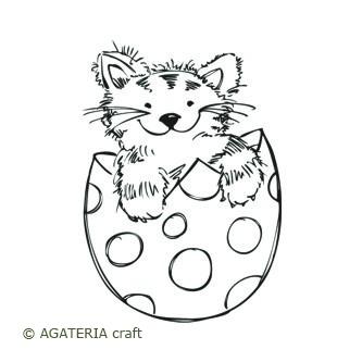 Kot w jaju