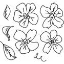 Kwiaty zestaw 1