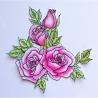 Róża - zestaw 2 duży