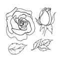 Rose - set 1 - small