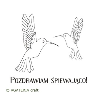 Kolibry 2 + napis