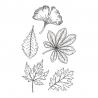 Liście jesienne zestaw