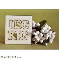 KTG  USG