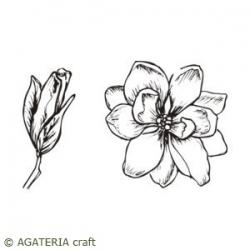 Magnolia zestaw 2