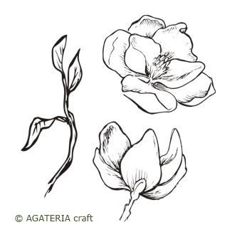 Magnolia zestaw 1